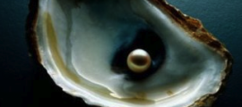 An oyster with a pearl.