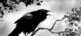 crow crowing at night art